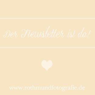ArtikelbildNewsletterRothmundFotografie